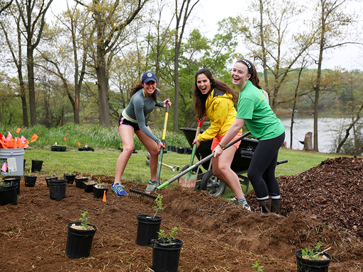 Sustainability Work Sprouting Up All Over Campus This Spring